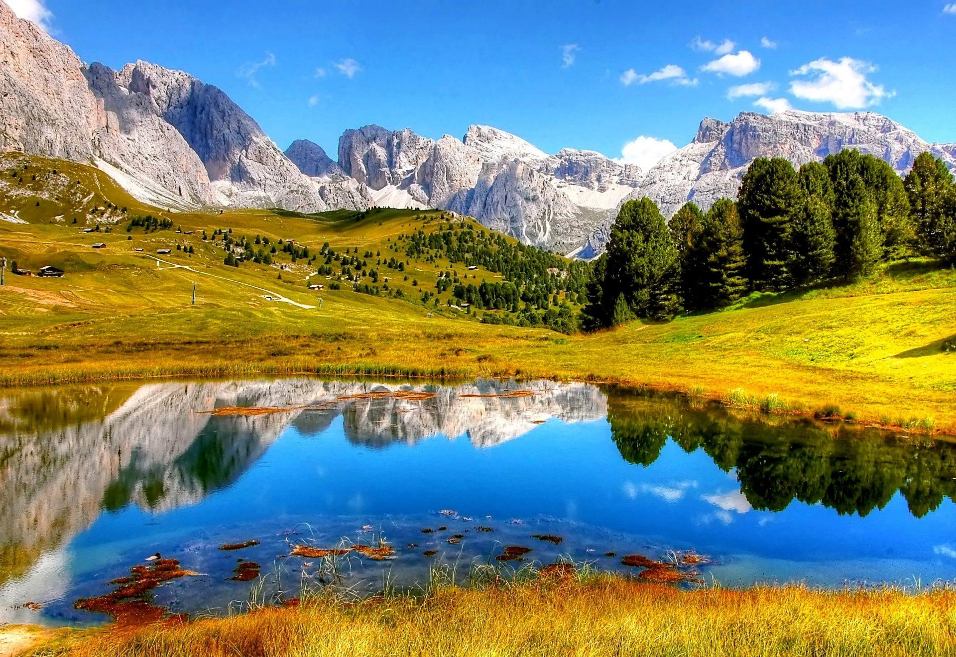 clouds-daylight-forest-grass-371589